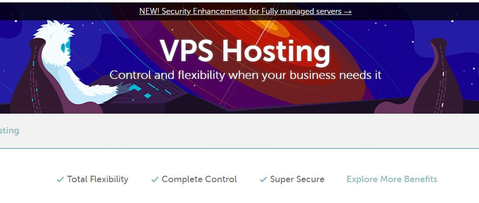 What is a VPS