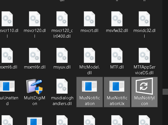 MusNotifyIcon.exe